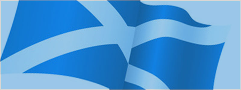 Scottish Budget Flag